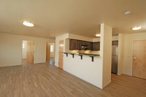 hall-street-lofts-sandwich-il-building-photo